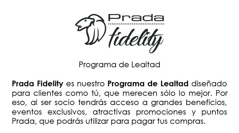 INFOGRAFIA-FIDELITY_0